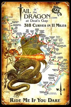 "Drive the ""Tail of the Dragon"" at Deal's Gap, NC has 318 Curves in 11 Miles!"