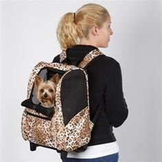 Luxury Dog Carriers Desginer Puppy Carrier Puppies Dogs Supplies