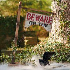 Beware Of Sign Halloween Decoration – Grandin Road - Modern Halloween Yard Props, Halloween Scene, Outdoor Halloween, Cute Halloween, Holidays Halloween, Halloween Crafts, Halloween Decorations, Halloween Ideas, Halloween Town