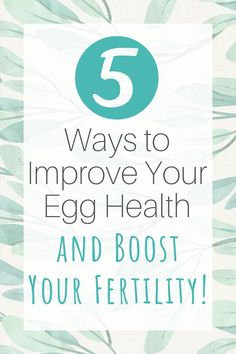 If you're trying to conceive, egg quality is super important. Here are five ways to naturally improve your egg quality and boost your fertility! Foods To Boost Fertility, Fertility Boosters, Fertility Smoothie, Fertility Yoga, Natural Fertility, Fertility Diet, Improving Fertility, Boost Fertility Naturally, Trying To Get Pregnant