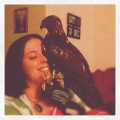 Male Red-Tailed Hawk, Rory and I. Falconry, Falconer - Hawks, Bird of prey. Hunters.
