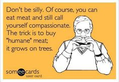 Can One Committed To The Five Precepts Cook Meat?