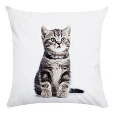 """Gris Housse de coussin personnalisé animaux chat chien Filles 16/"""" X 16/"""" Cadeau Décoratif Cushi"""