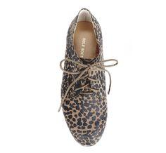 Leopard oxford