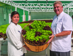 "Chefs with lettuce from the Grand Hyatt Kauai Resort Hawaii hydroponics garden: ... And while local food is an important issue no matter where you live, it has even more urgency in an island environment where most food is shipped in from the big island or mainland.  ""It's extremely important for businesses on the island in particular due to the cost of shipping alone,"" says Wold. ""This model of sustainable food production and this kind of diversified agriculture will help us increase our…"