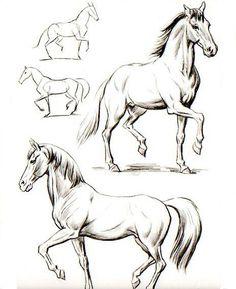 Como dibujar un caballo imagenes - Imagui                              …