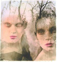 Ellen Rogers Photography