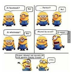 Crazy Funny Memes, Wtf Funny, Funny Quotes, Minions, Sarcastic Humor, Life Humor, Funny Images, Life Is Good, Comedy