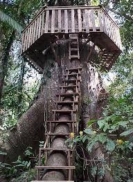 casa sull'albero http://muccapazzapazza.altervista.org/lista-cose-dormire-in-casa-sull-albero/