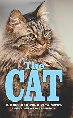 The Cat: The Password Organizer Log That Looks Like a Regular Book (Hidden in Plain View) (Volume 4) by Lourdes Welhaven http://www.amazon.com/dp/1500863548/ref=cm_sw_r_pi_dp_WWn3vb1QW06A7