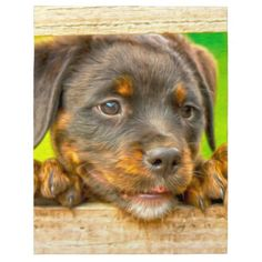 #Rottweiler Puppy Dog Water Color Oil Paint Art Jigsaw Puzzle - #rottweiler #puppy #rottweilers #dog #dogs #pet #pets #cute