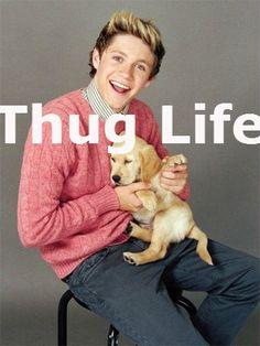 Niall Horan funny thug life