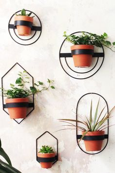 Minimalist geometric planters are the perfect home decor for any room. These stylish black metal planters can be moved around to create the planter wall arrangement of your choice.