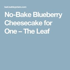 No-Bake Blueberry Cheesecake for One – The Leaf