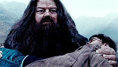 Harry Potter gifs- beginnings and endings