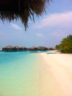 リゾート好きの憧れ!インド洋に浮かぶ世界の楽園モルディブ   こ…