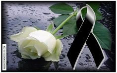 que en paz descanse images - Yahoo Search Results Condolences Quotes, Condolence Messages, Miss My Mom, Animated Love Images, Losing A Loved One, Flower Phone Wallpaper, Happy Birthday Messages, Memories Quotes, Funeral Flowers