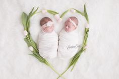 Ava and Alessandra come to award winning twin newborn photographer Brittany Gidley for their newborn portraits with the best in Cleveland and beyond! Newborn Twins, Twin Babies, Twin Girls Photography, Photography Ideas, Newborn Pictures, Maternity Photographer, Brittany, Picture Ideas, Photo Ideas