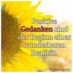 Positive Gedanken am Morgen sind der Beginn einer wunderbaren Realität.