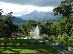 Montagne Pelée & Domaine d'Émeraude