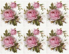Shabby chic catalog digital Shabby chic pink rose collage sheets for scrapbook