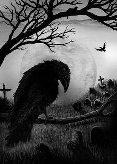 4125520fefb3debb37022c79c51e8e5d--crow-tattoos-raven-art.jpg (236×331)