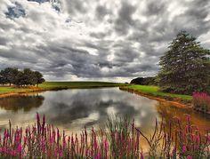 Hyde Hall Pond