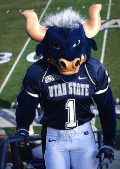 Utah State University in Logan, Utah. The Aggies! This is Big Blue and we love him! Go Aggies! Football Usa, College Football, Nfl, Utah State Football, Football Sayings, American Football, Utah State University, University Graduate, Sports Advertising
