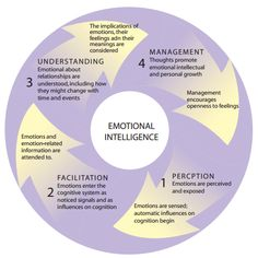 THE EFFECTIVE LEADER: UNDERSTANDING AND APPLYING EMOTIONAL INTELLIGENCE - Ivey Business Journal