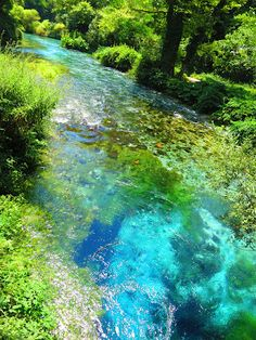Syri i kalter, Albanië