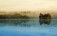 'Misty Lake' by Robin Hedberg