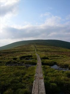 Wicklow Way, County Wicklow, Ireland (Don Quilty)