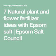7 Natural plant and flower fertilizer ideas with Epsom salt   Epsom Salt Council
