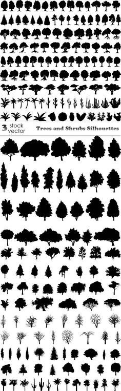 Vectors - Trees and Shrubs Silhouettes