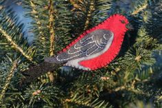Pine Grosbeak felt ornament pattern.
