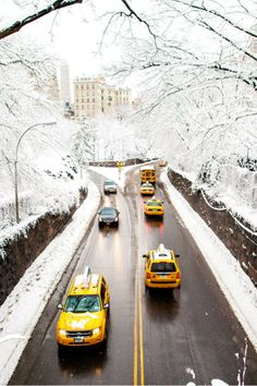 Snow covered central park.