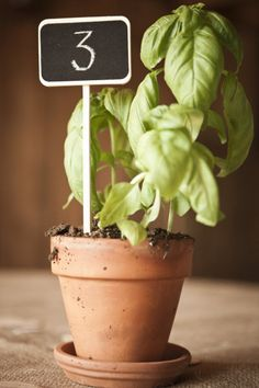 potted herb table numbers... I want -  Imagine the smell. Idea to have a different herb per table and name the table depending on the herb