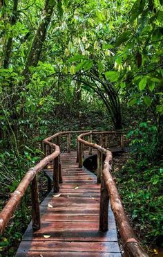 Horquetas de Sarapiqui Costa Rica