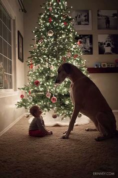 Are you waiting for Santa too?