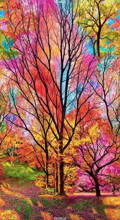Nature wallpaper - 23 Panel Timeless Treasures Large Scale Electric Forest Sold by the Panel x 44 ) Fall Wallpaper, Galaxy Wallpaper, Colorful Wallpaper, Beautiful Nature Wallpaper, Beautiful Landscapes, Beautiful Paintings Of Nature, Colorful Paintings, Tree Paintings, Nature Paintings