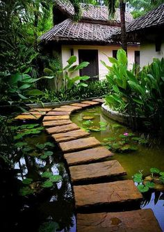 If You Had Thoughts Of Designing Your Own Backyard Pond Water Garden Around Your Home, Here's An Idea For You! -AD