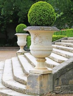 urns with topiaries on stone steps