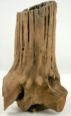 """Natural Hollow Tree Stump  $11.95 (6- 9"""" tall)  I have no idea what to do with this.  I just like it"""