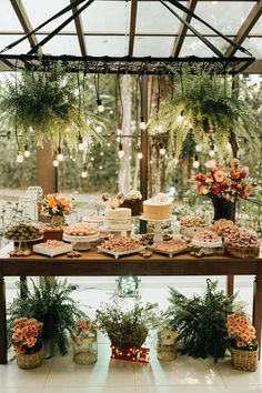 mini wedding charmoso