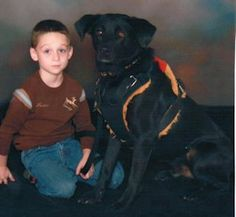 Autism Service Dogs....Changed our lives..Lab or Lab Mixes make for great friends and guide dogs.