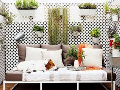 Small balcony with a wall of potted plants, and a futon