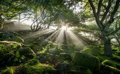 September Mist 3 by James Mills on 500px