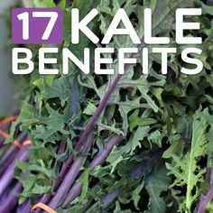 Why all the fuss over kale? Well, once you see its many benefits you might be jumping on the bandwagon yourself. It's one of the most nutrient dense vegetables around, on par with well-known healthy veggies like spinach and broccoli. In some areas it's even better for you than those, so...