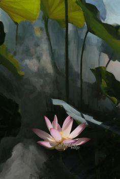 Lotus Flower Paintings - Image Based - Akvis Oil Paint Filter - akvis.com/en/oilpaint/index.php DD0A0016-cen-ls05-1000