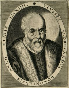 Ulisse Aldrovandi (aka Ulysses Aldrovandus, 11.09.1522 -4.05.1605) was an Italian physician and naturalist